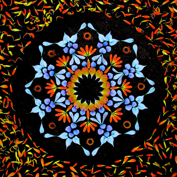 flower mandalas by kathy klein (8)