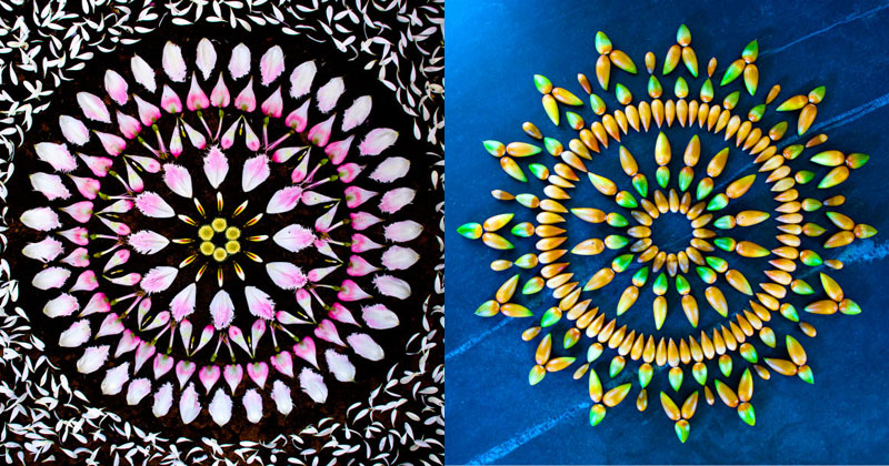 flower-mandalas-by-kathy-klein-(cover)