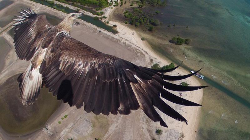 International Drone Photography Awards (3)