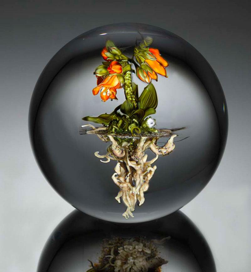 miniature glass gardens encased in clear glass orbs by paul stankard (2)