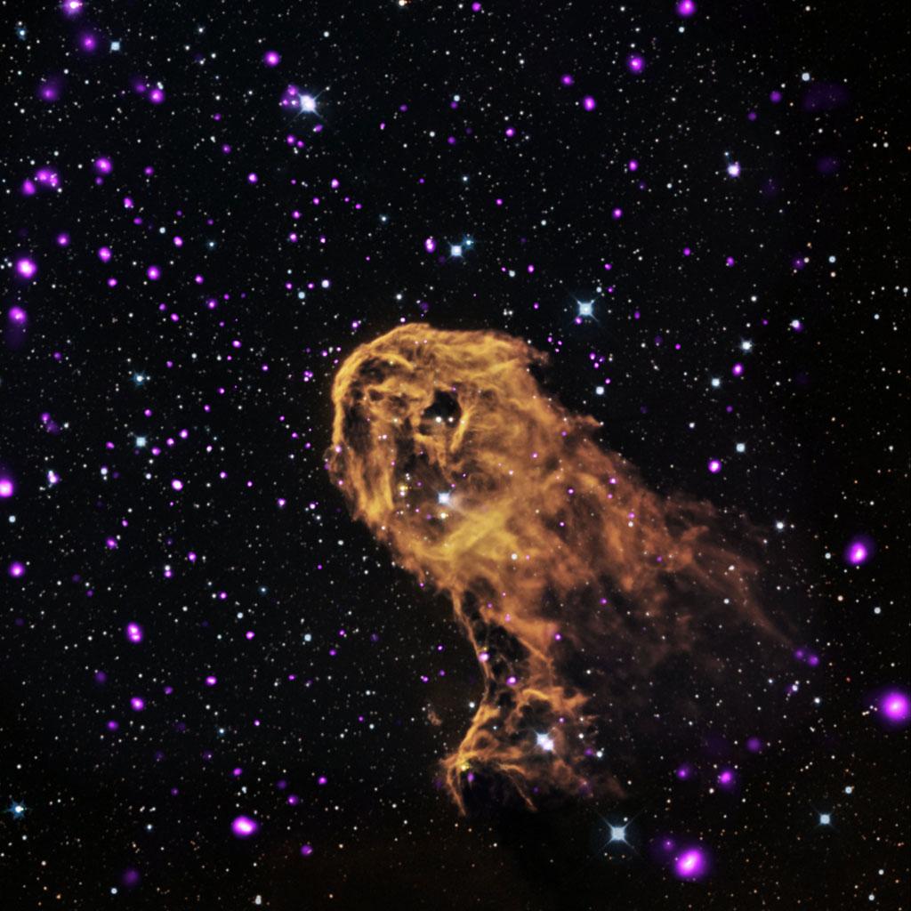 NASA's Chandra X-Ray Observatory (11)