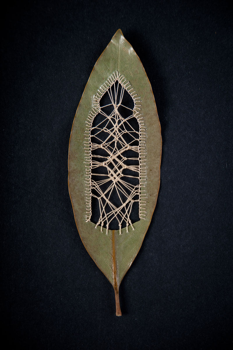 stitched leaves by hillary fayle (8)