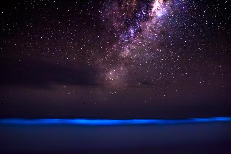 Bioluminescent plankton and milky way galaxy