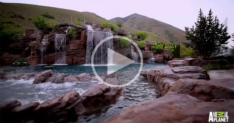 A $2 Million Backyard Pool You Can Scuba Dive In