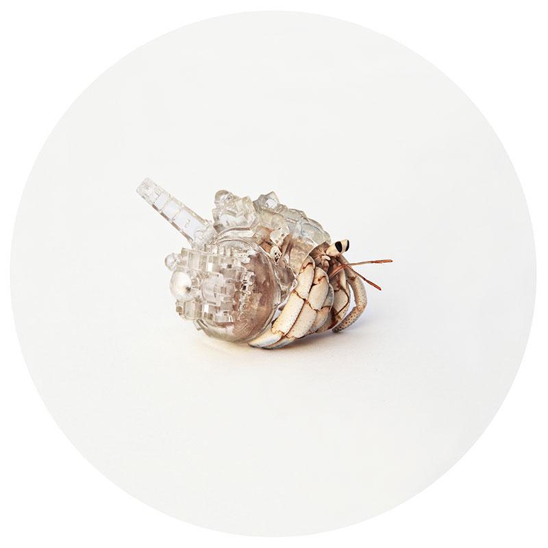 hermit crab glass city by aki inomata santorini