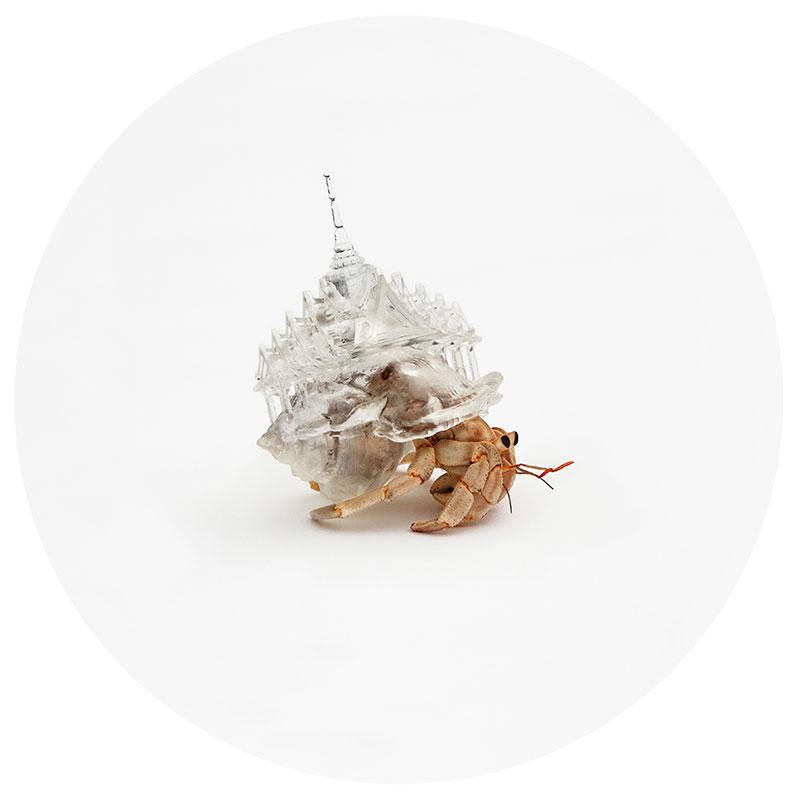 hermit crab glass city by aki inomata thailand