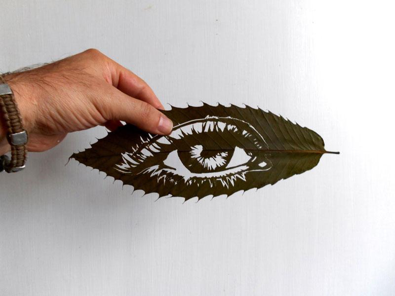 leaf cut art by omad asadi (14)