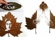 Incredible Artworks Carved into Naturally Fallen Leaves