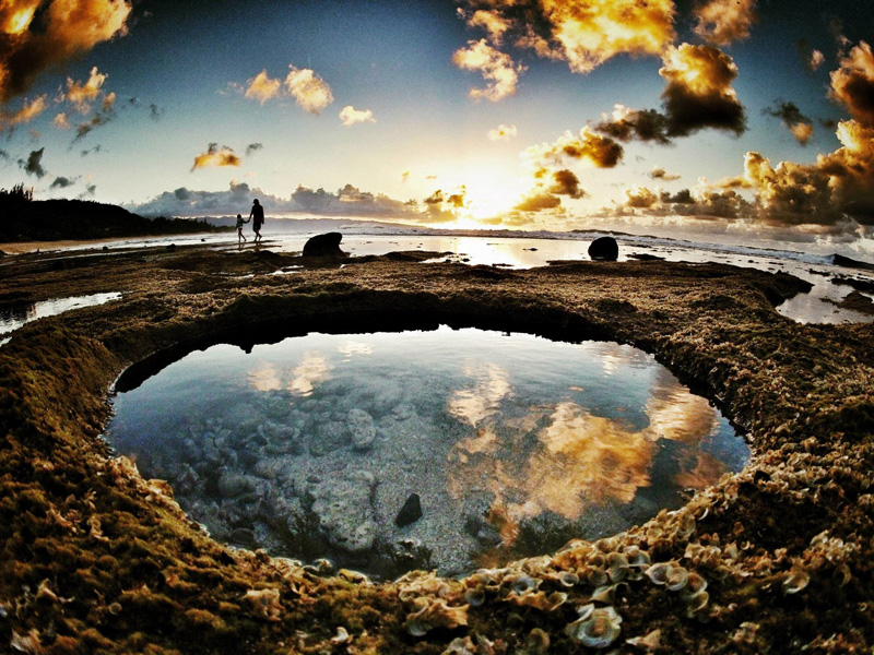 Tide Pools at Rocky Point, Mexico