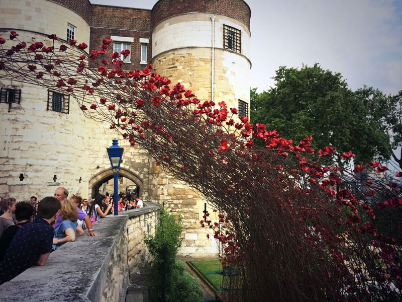 Tower of London's 888,246 Ceramic Poppies Commemorate Every British Soldier Lost in WWI (4)