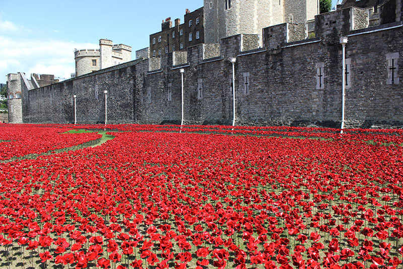 Tower of London's 888,246 Ceramic Poppies Commemorate Every British Soldier Lost in WWI (6)