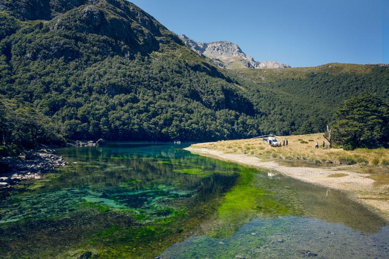 worlds clearest lake blue lake nelson nz (5)
