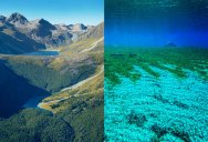 The Clearest Lake in the World is in New Zealand