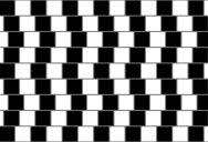 This is the Cafe Wall Illusion
