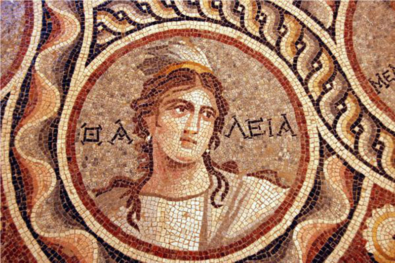 ancient mosaics discovered in ancient greek city of zeugma (2)