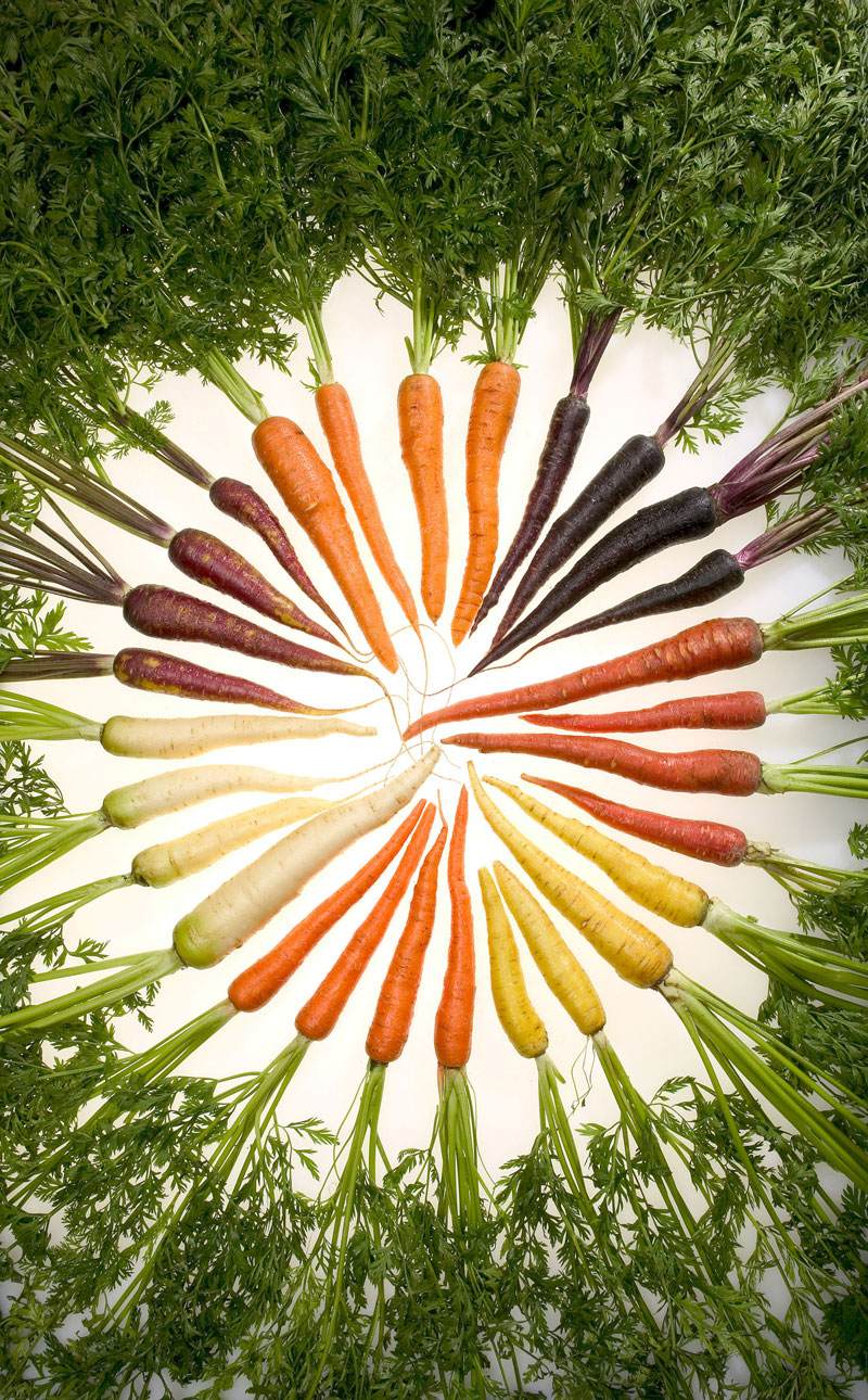 carrot rainbow Picture of the Day: Carrot Rainbow