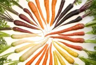Picture of the Day: Carrot Rainbow