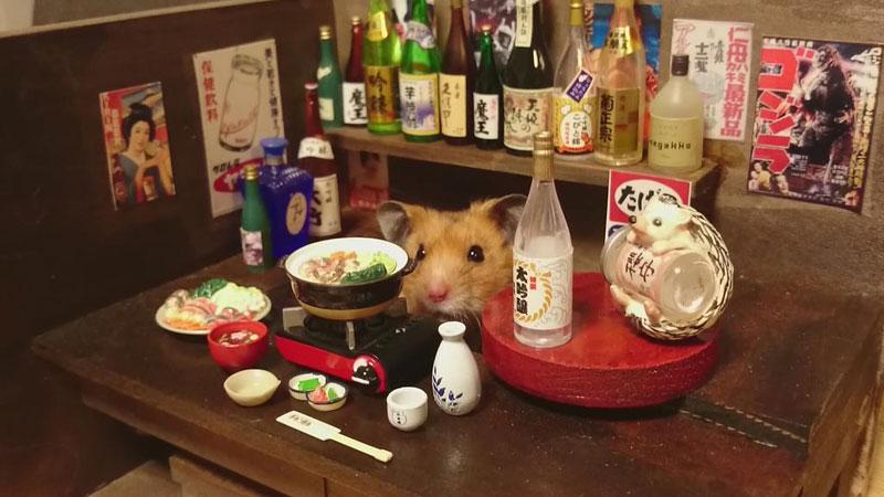 hamster shopkeepers (15)
