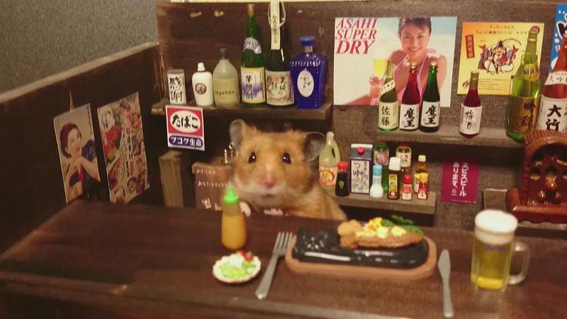 hamster shopkeepers (6)