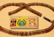 How To Make the World's Simplest Electric Train