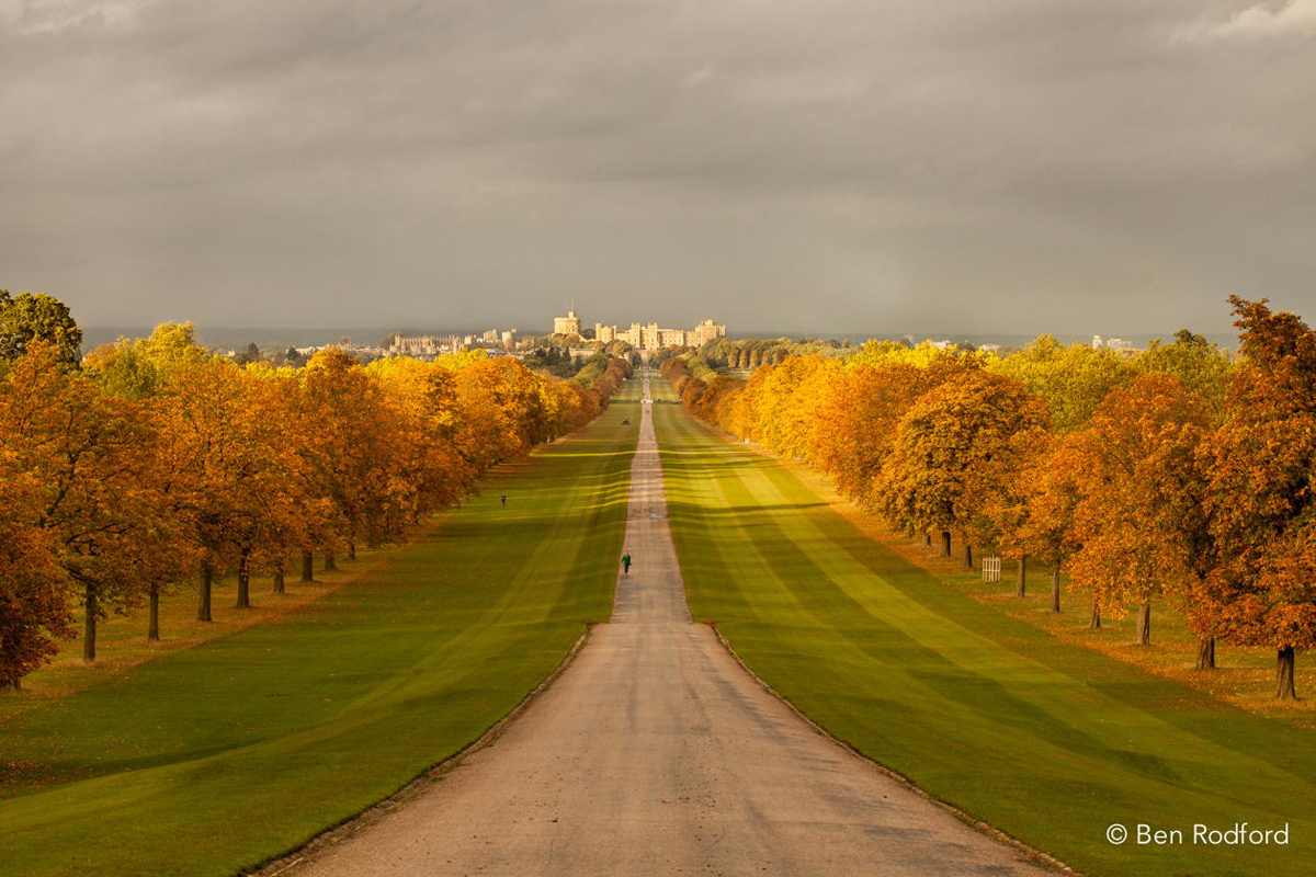 the long walk snow hill windsor park to windsor castle The Top 100 Pictures of the Day for 2014