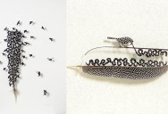 Artist Turns Moulted Feathers Into Works of Art Using Scissors