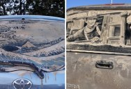 Artist Turns Dirty Cars Into Works of Art