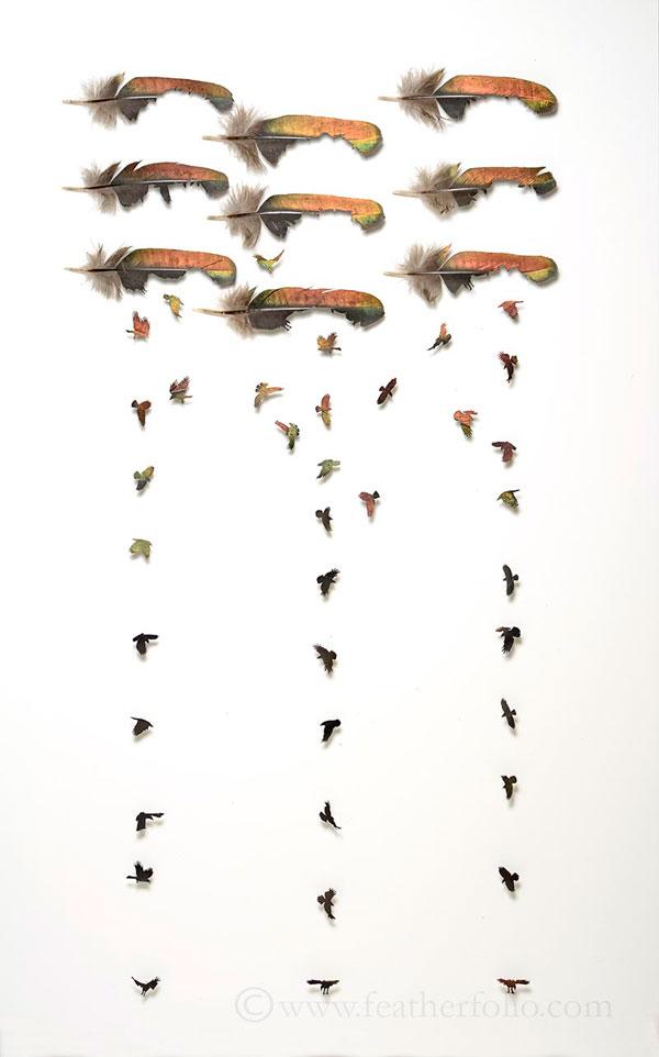 feather art by chris maynard (9)