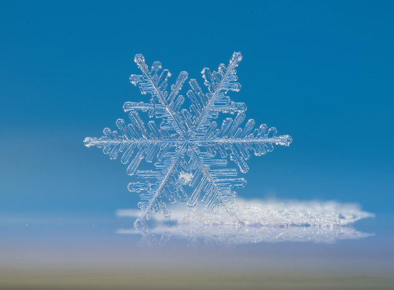 Picture of the Day: Macro Snowflake