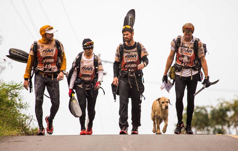 dog follows and joins swedish adventure race team  (6)