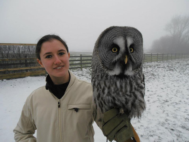 Handler Shares Her Amazing Images With Birds of Prey (1)