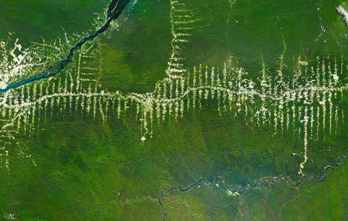 Brazilian-Amazon-Deforestation