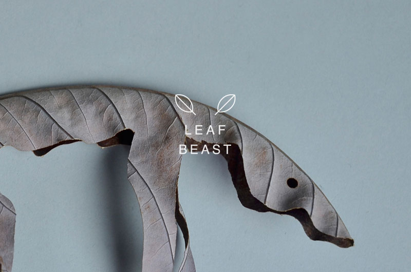 LEAF BEASTS by Baku Maeda (5)