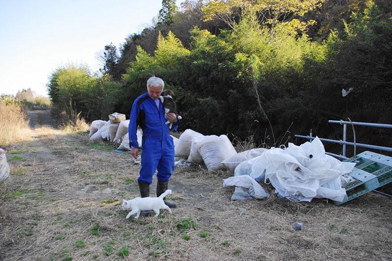 after fukushima Naoto Matsumura takes care of abandoned animals in tomioka (6)