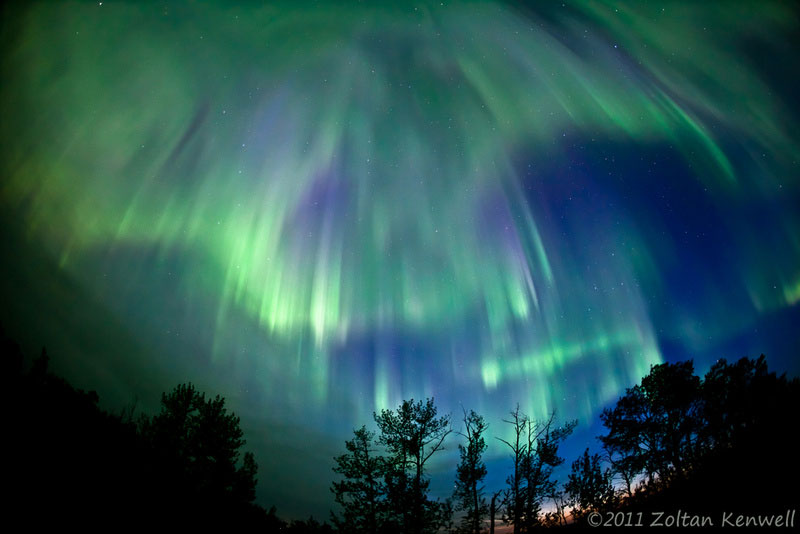green auroras for st patricks day (10)