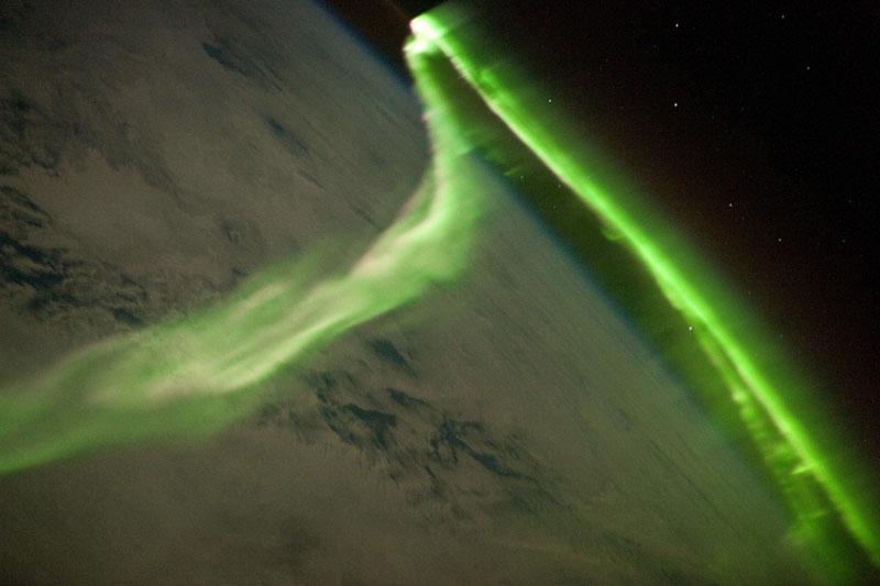 green auroras for st patricks day (4)