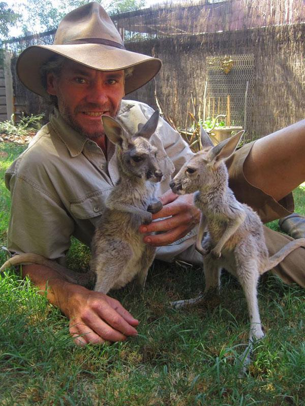 kangaroo dundee chris brolga barns kangaroo sanctuary (10)