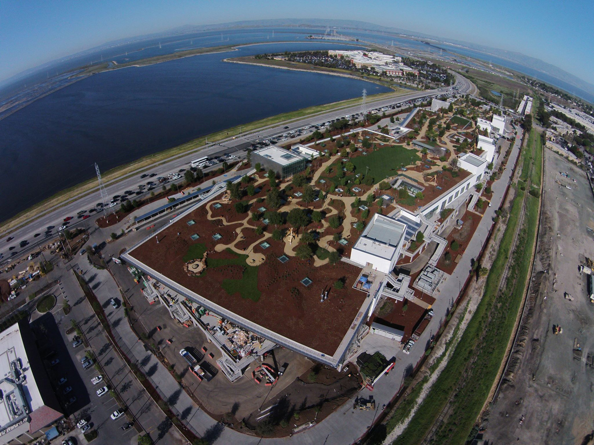 new facebook hq aerial green roof menlo park Picture of the Day: The 9 Acre Green Roof at Facebooks New HQ