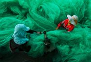 The 12th Annual Smithsonian Photo Contest Winners