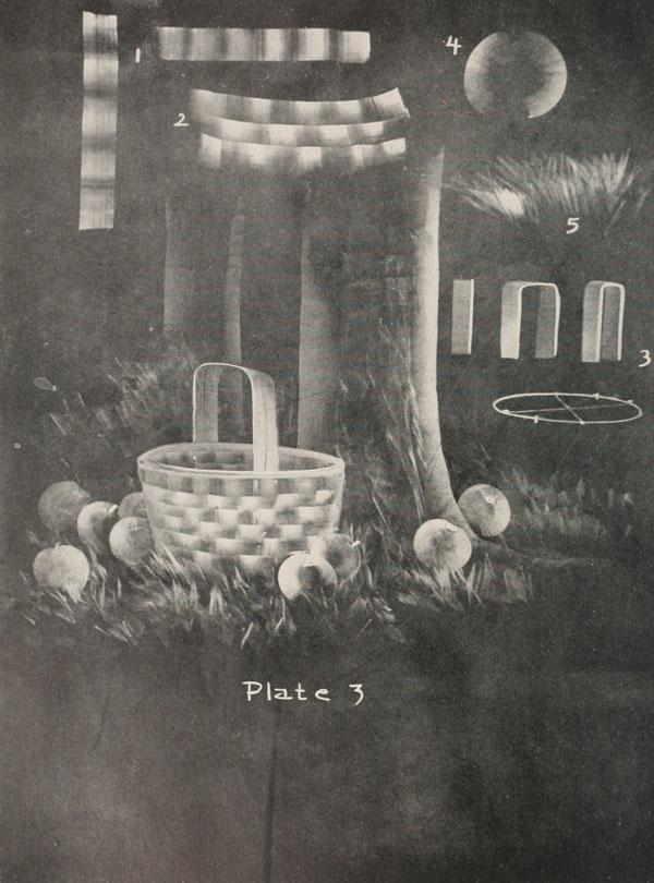 blackboard chalk art from 1908 by frederick whitney (3)