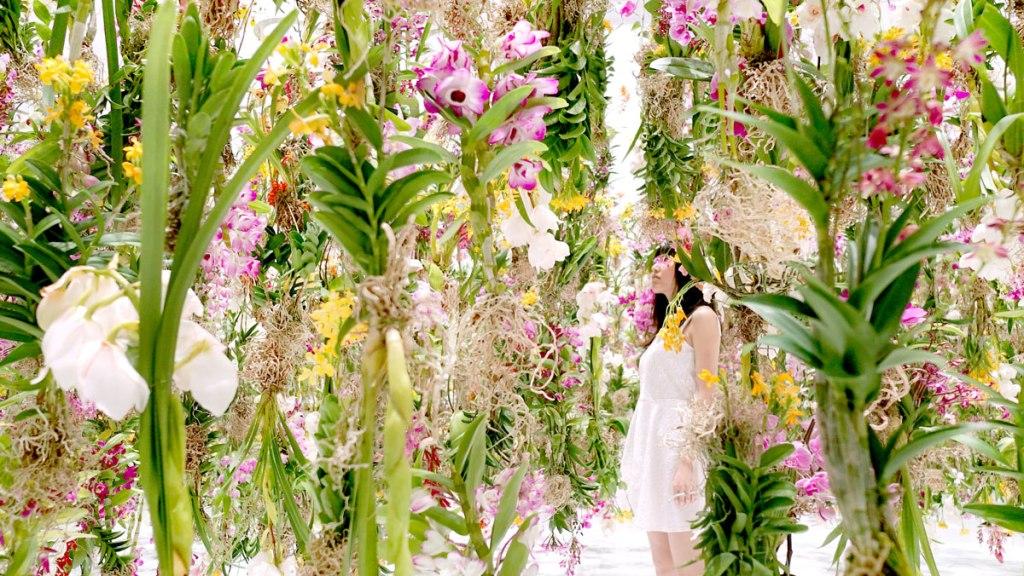 Floating-Flower-Garden_by_teamlab_japan (1)