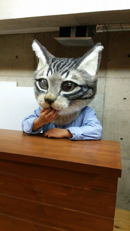giant cat head you can wear japan (2)