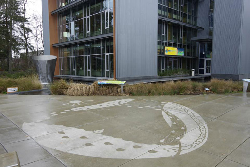 sidewalk art only appears when it rains peregrine church rainworks (4)