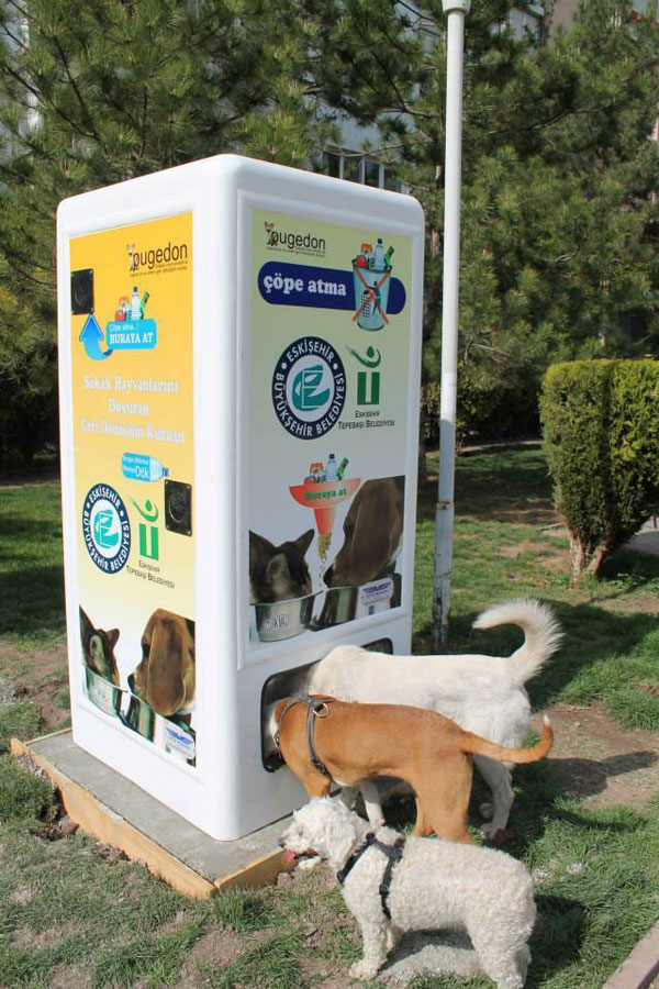 Vending Machine Feeds Stray Animals in Exchange for Recycled Bottles (5)