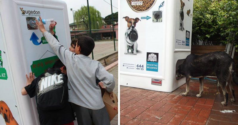 Vending-Machine-Feeds-Stray-Animals-in-Exchange-for-Recycled-Bottles-(cover)