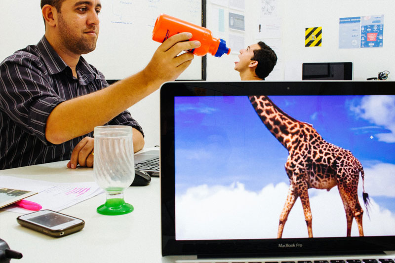 Coworkers-Add-their-Heads-to-Animals-on-Desktop Backgrounds (14)