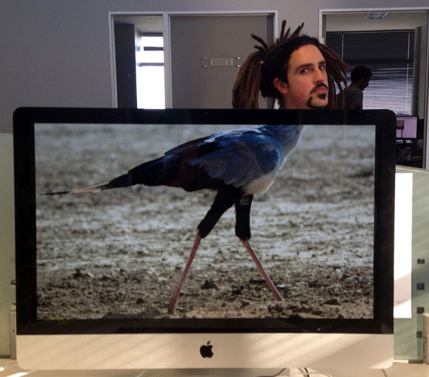 Coworkers-Add-their-Heads-to-Animals-on-Desktop Backgrounds (27)