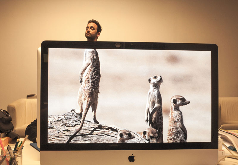 Coworkers-Add-their-Heads-to-Animals-on-Desktop Backgrounds (5)