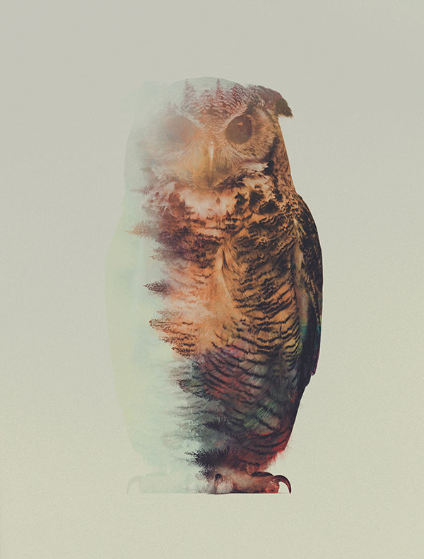 double exposure animal portraits by andreas lie (9)