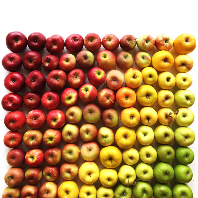 food gradients by brittany wright (5)